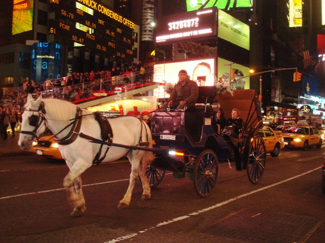 Horse carriage in Times Square